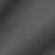 Anthracite Leather